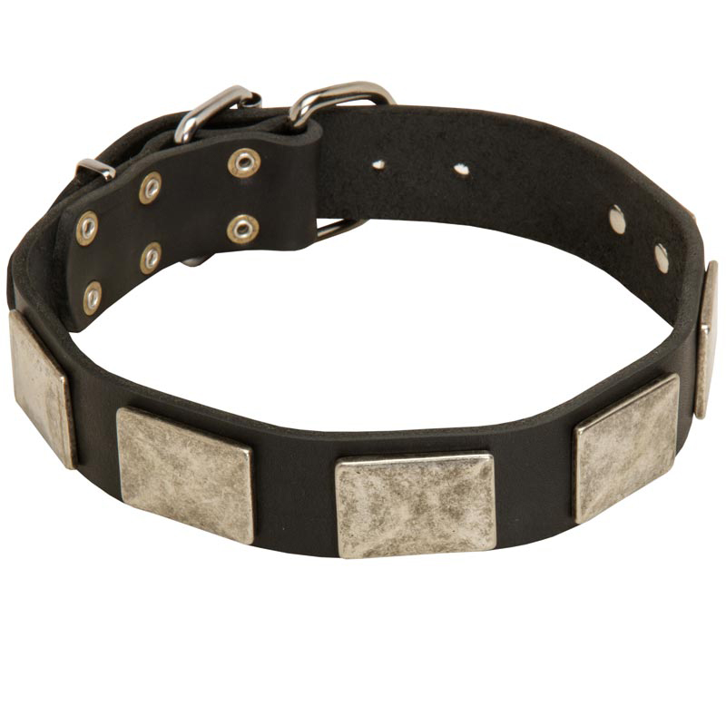 Handcrafted Leather Rottweiler Collar with Vintage Massive Plates