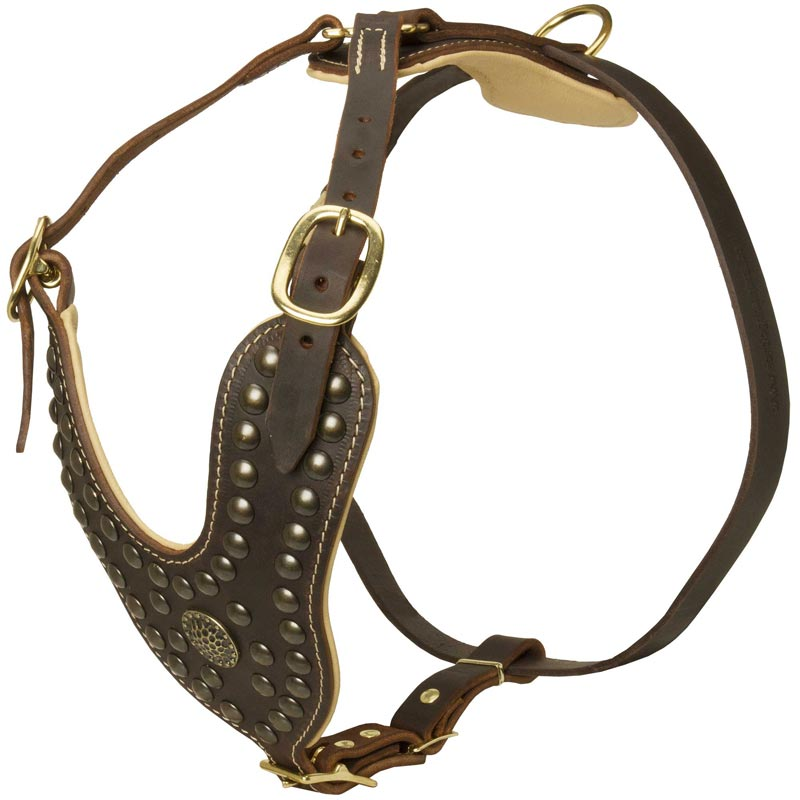 Royal Nappa Padded Studded Leather Rottweiler Harness