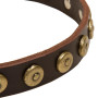 Designer Leather Dog Collar with Circles Rottweiler