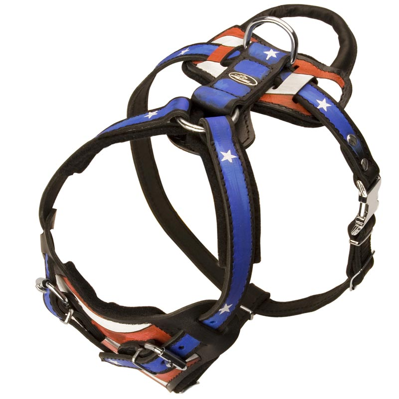 American Flag Handpainted Rottweiler Harness for Agitation/Protection Training