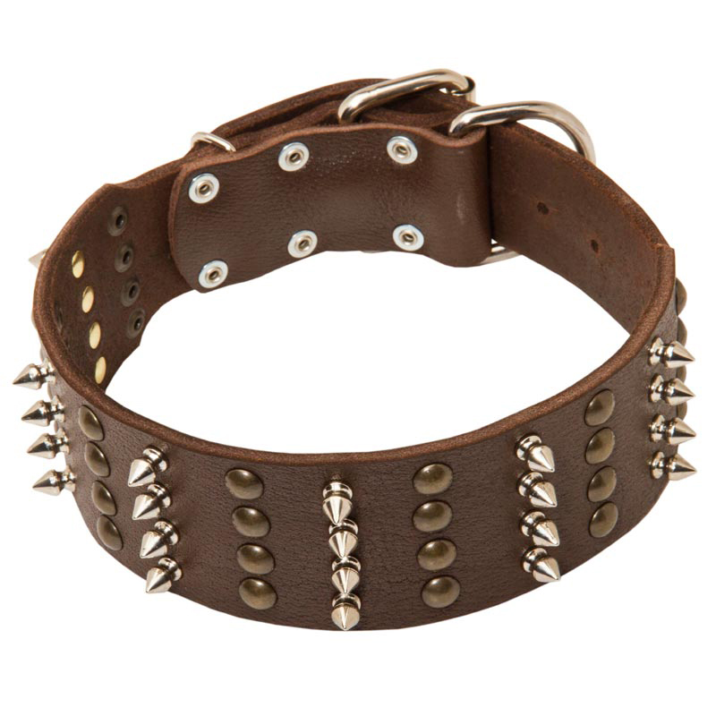 Wide Leather Rottweiler Collar with Studs and Spikes