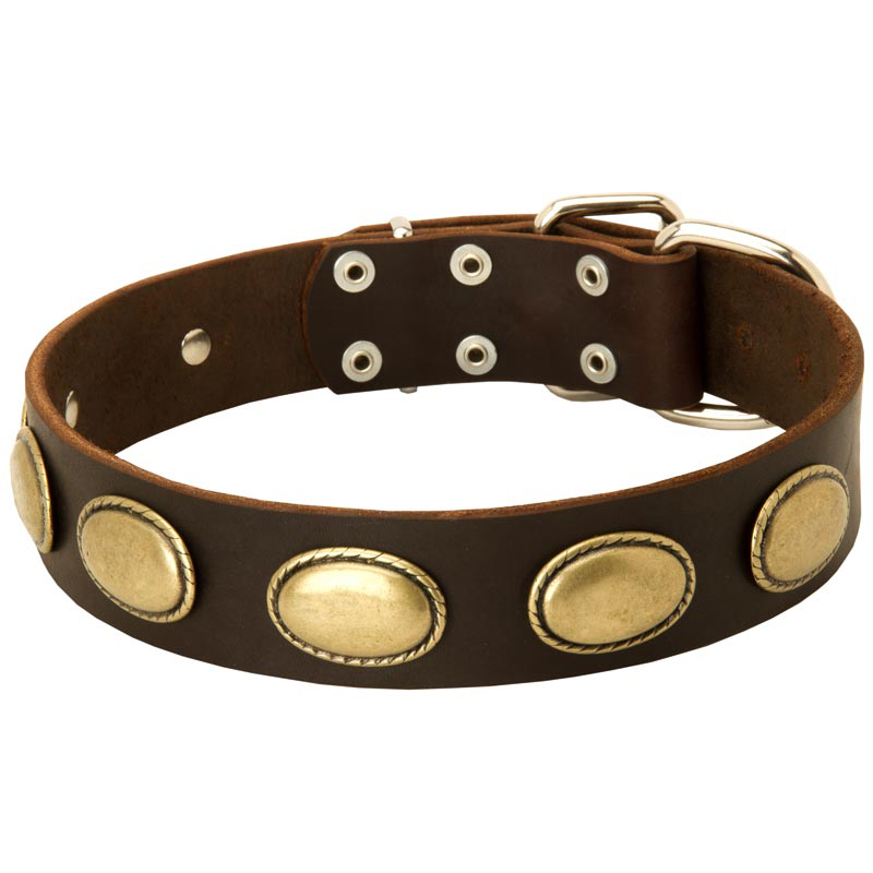 Vintage Leather Dog Collar with Oval Plates for Rottweiler