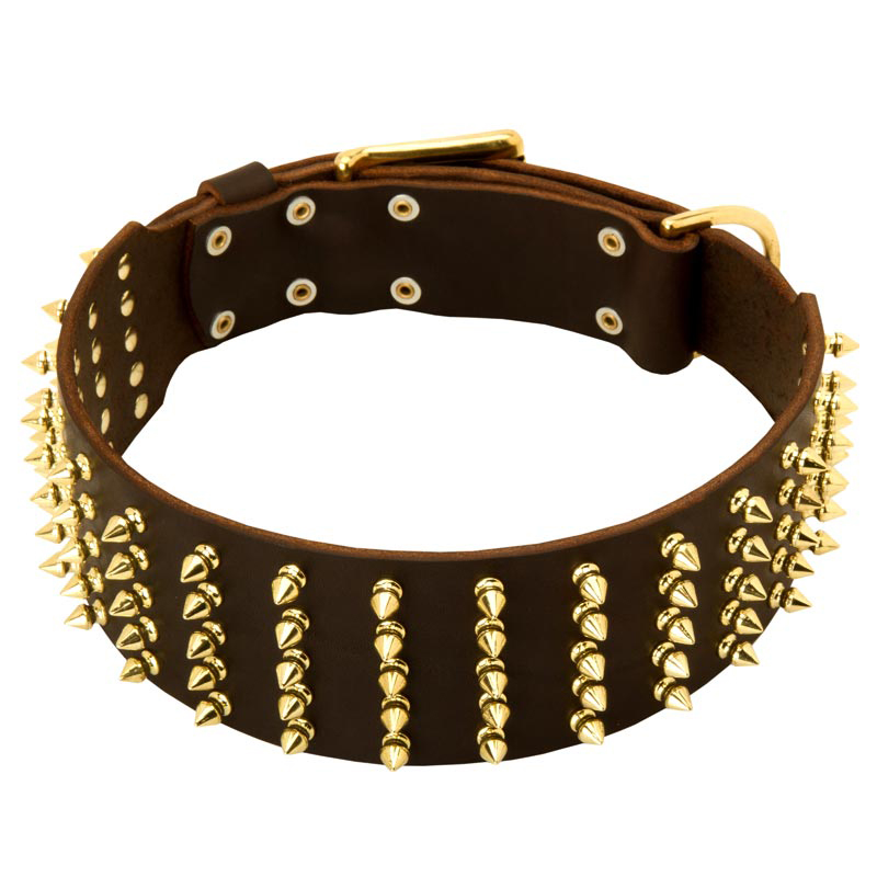 3 Inch Decorated Leather Rottweiler Collar with 5 Rows of Brass Spikes