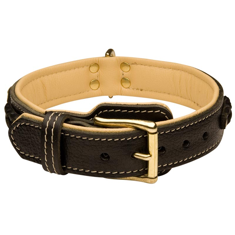 Handmade Royal Nappa Padded Leather Rottweiler Collar