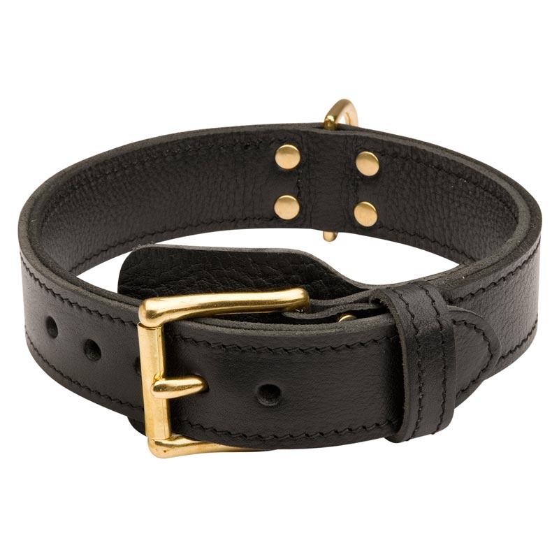Agitation Training Leather Dog Collar for Rottweilers