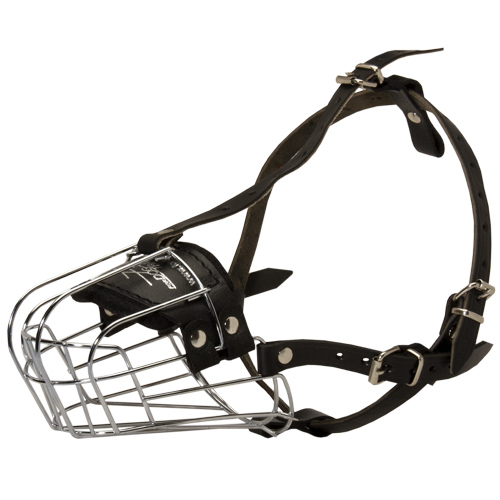 Comfortable Wire Cage Dog Muzzle for Rottweiler Walking and Training