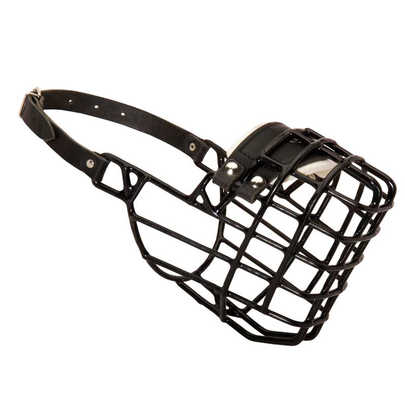 Wire Cage Rottweiler Dog Muzzle with One Strap for Winter Activities