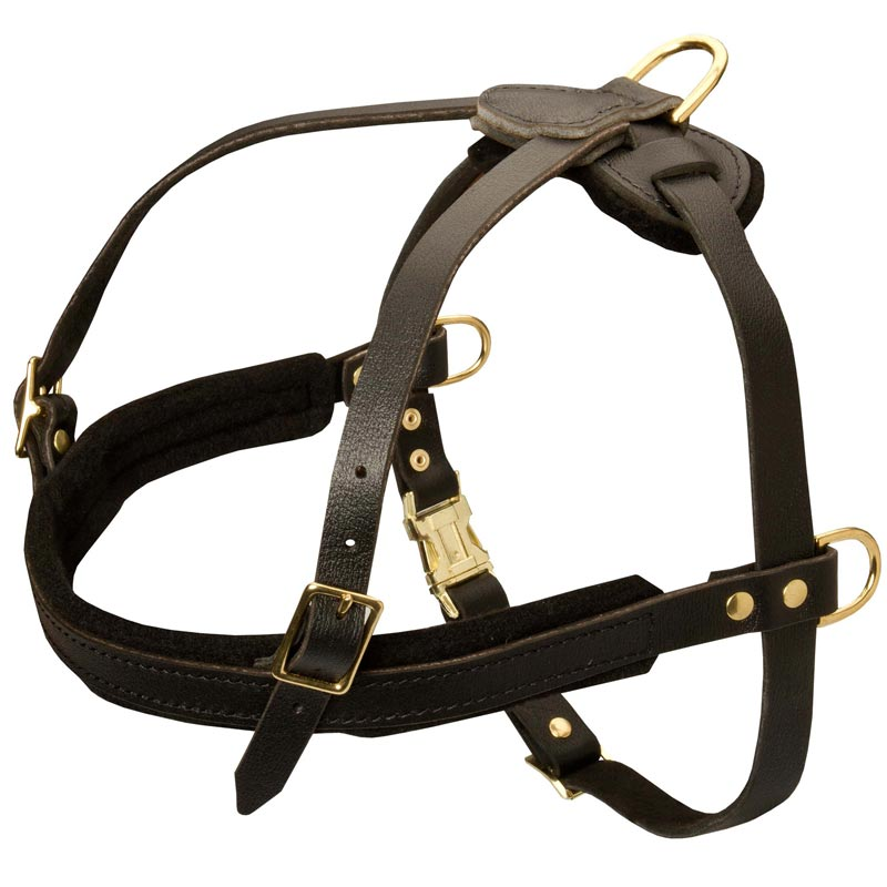 Tracking/Pulling/Agitation Leather Rottweiler Harness