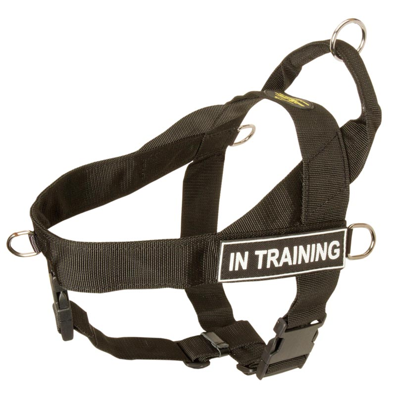 Nylon Rottweiler Harness for Training, Pulling, Tracking and SAR