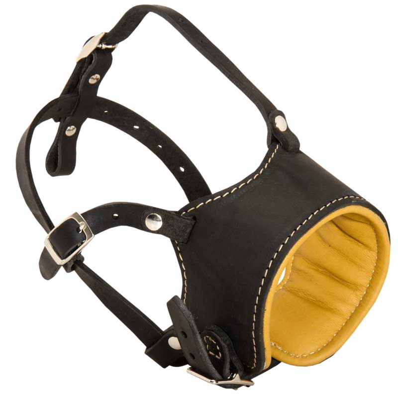Anti-Barking Nappa Padded Leather Dog Muzzle for Rottweiler