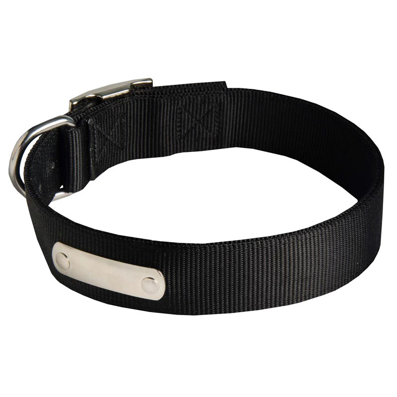 2 Ply Nylon Dog Collar with Identification Tag for Rottweiler