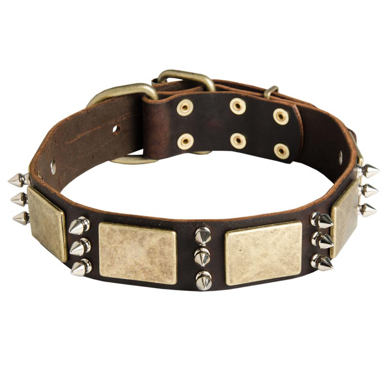 War Design Leather Rottweiler Collar Decorated with Massive Plates and Spikes