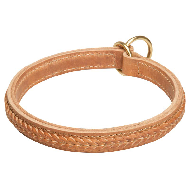 1 Inch Fashionable 2 Ply Leather Rottweiler Choke Collar with Braids