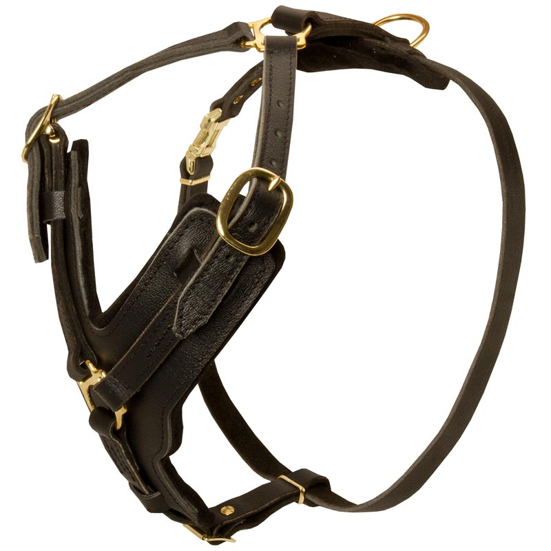 Exclusive Durable Leather Dog Harness for Rottweiler